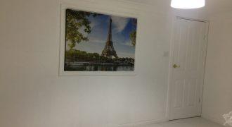 New Studio for rent